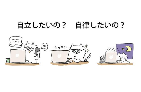 171120_working_cat.jpg
